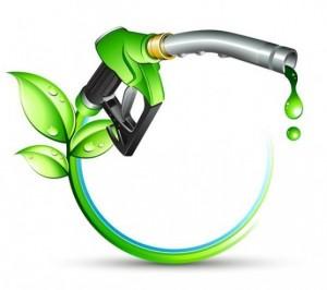 biodiesel-oil